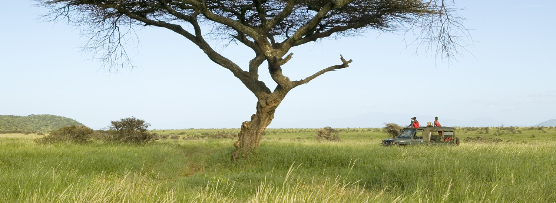 Wo sind die Serengeti Plains?