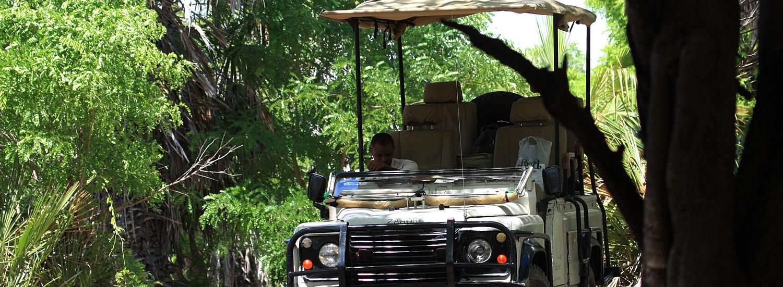 Tansania Safari Selous Ruaha