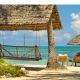Blue Oyster Zanzibar Beach Afromaxx