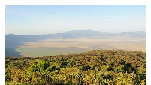 Ngorongoro Crater: