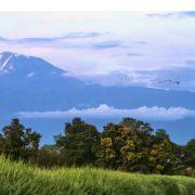 Tagestouren Kilimanjaro