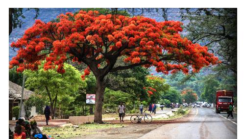 Sehenswürdigkeiten Tansania