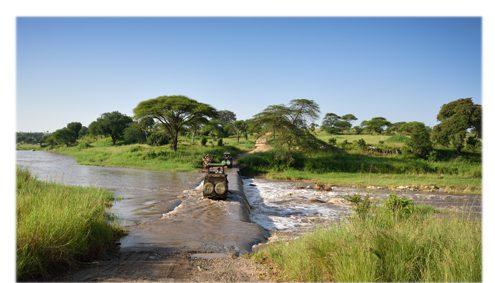 Wo Safari buchen?