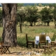 Which accommodation to stay on safari