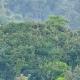 Ruanda - Wann ist die beste Reisezeit?
