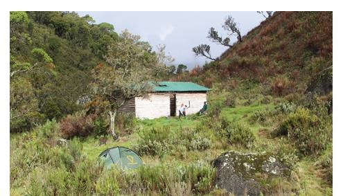 Mount Elgon - Sipi Trail Afromaxx Reisen