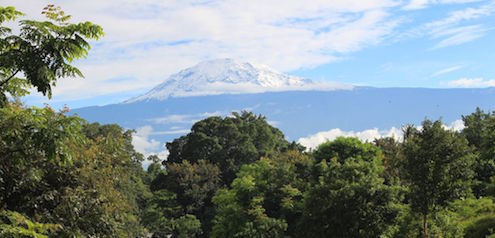 Welche Fluggesellschaften fliegen zum Kilimandscharo?