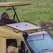 Safaris - Wann beste Reisezeit?