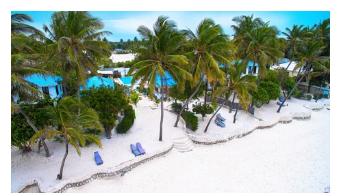 Indigo Beach Zanzibar Hotel Zanzibar Beach Tansania Afromaxx