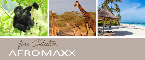 Die neuen Afromaxx-Kataloge für 2020 sind da